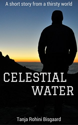 Celestial Water: A Short Story
